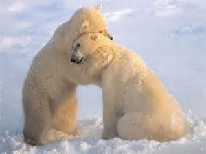 Even they know...many hugs a day keeps one healthy!