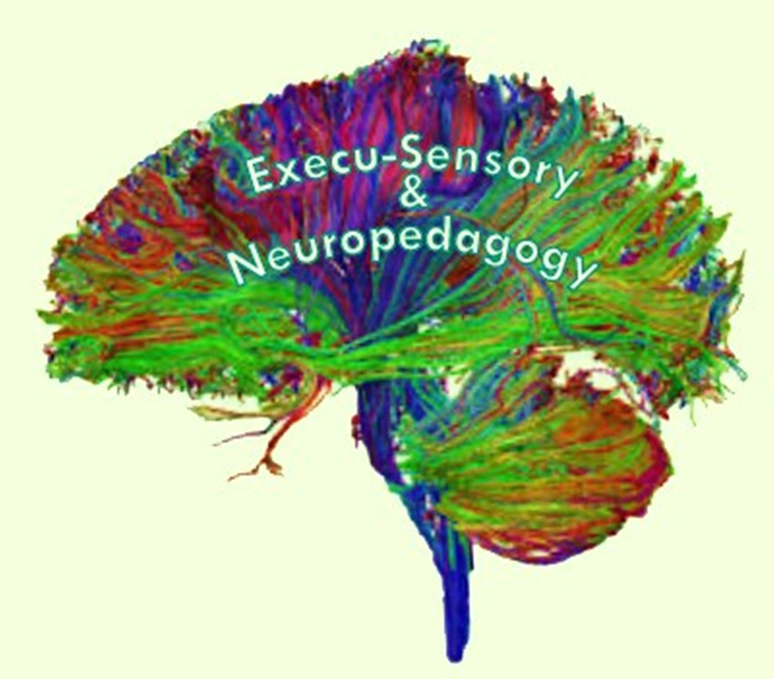 Execu-Sensory & Neuropedagogy Educational Consulting Services » Podcasts
